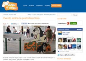 Blog sobre perros y gatos